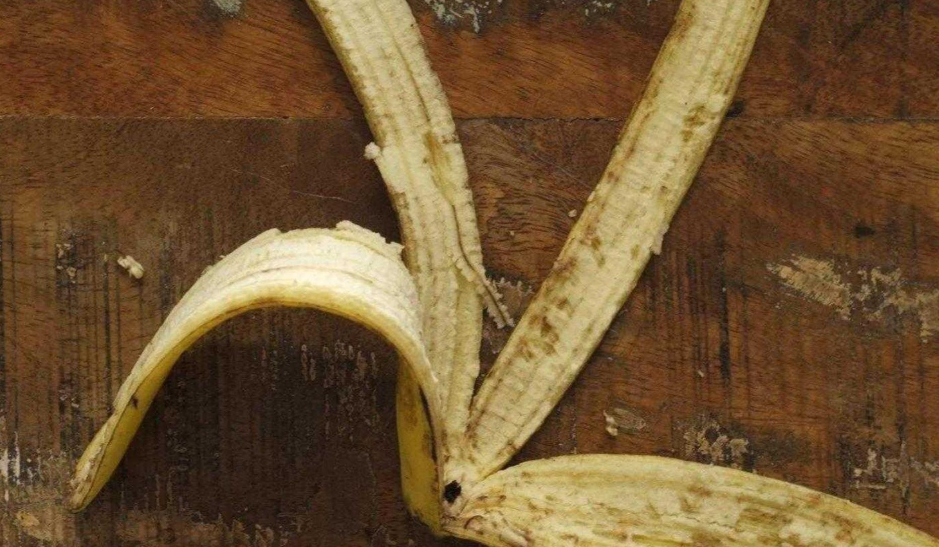 Banana Peel © Ivo Schneider